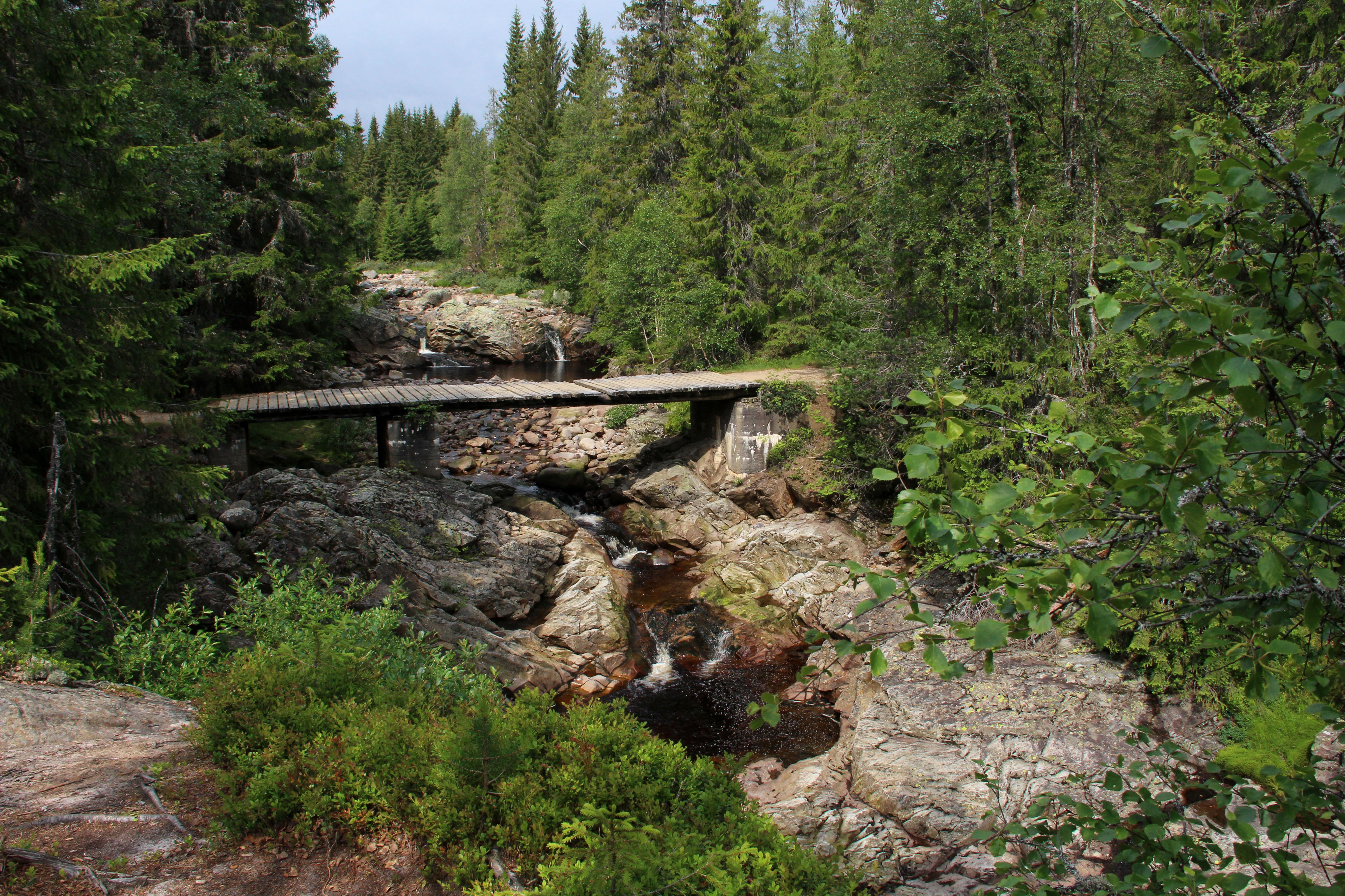 En varm og tørr sommer gir lav vannstand, og gode muligheter for å utforske elva nede i juvet. Her fra utgangspunktet for rundturen.